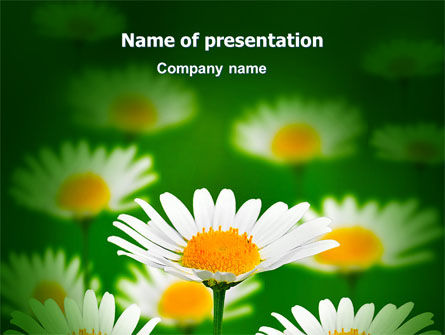 Daisy Meadow Free PowerPoint Template, 06748, Nature & Environment — PoweredTemplate.com
