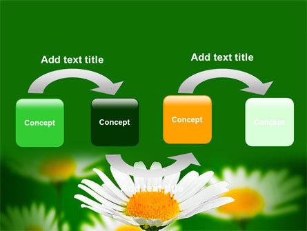 Daisy Meadow Free PowerPoint Template, Slide 4, 06748, Nature & Environment — PoweredTemplate.com