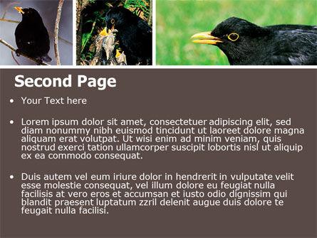 Blackbird Free PowerPoint Template, Slide 2, 06751, Animals and Pets — PoweredTemplate.com
