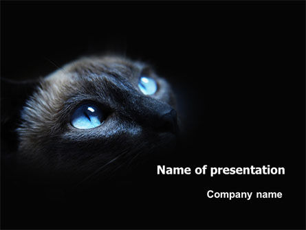 Animals and Pets: Cat PowerPoint Template #06759