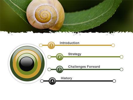 Snail Shell PowerPoint Template, Slide 3, 06761, Animals and Pets — PoweredTemplate.com