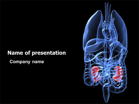 Medical: Kidney PowerPoint Template #06769