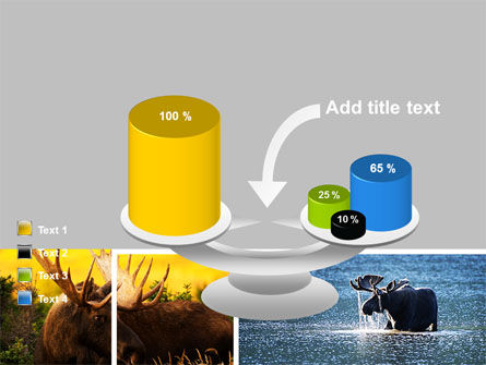 Moose PowerPoint Template Slide 10