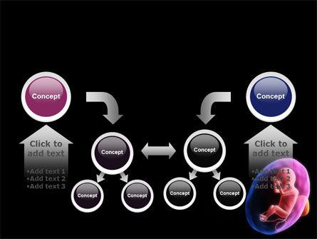 Fetus PowerPoint Template Slide 19