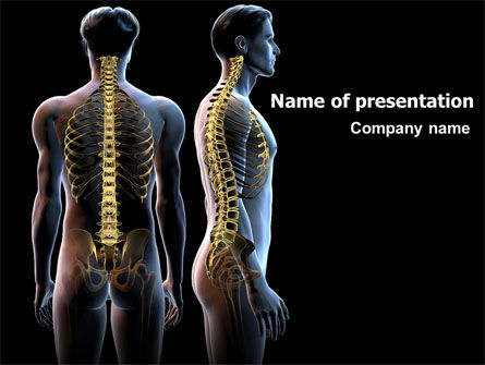 Medical: Vertebral Column PowerPoint Template #06862