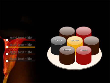 Red Calla PowerPoint Template Slide 12