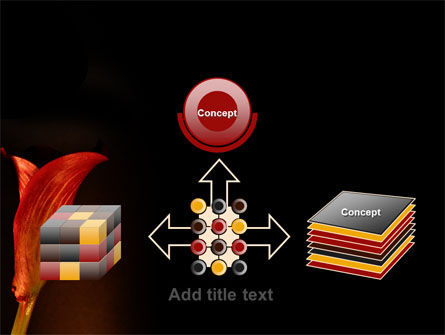 Red Calla PowerPoint Template Slide 19