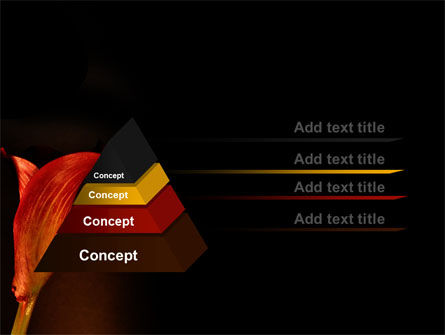 Red Calla PowerPoint Template, Slide 4, 07056, Agriculture — PoweredTemplate.com