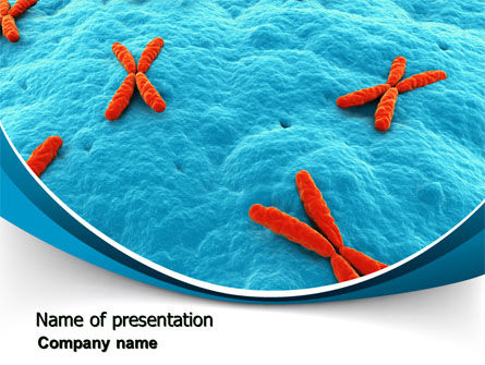 X-Chromosome PowerPoint Template, 07173, Medical — PoweredTemplate.com