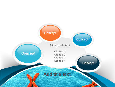 X-Chromosome PowerPoint Template Slide 16