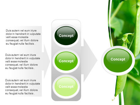 Pea Pods PowerPoint Template Slide 11