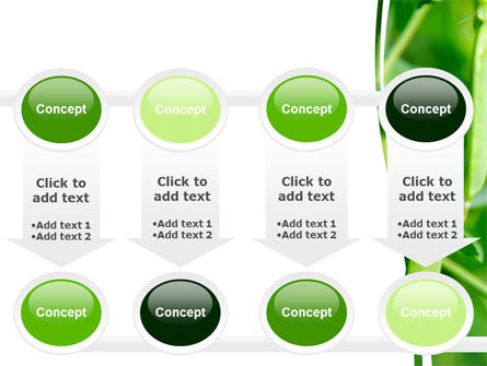 Pea Pods PowerPoint Template Slide 18