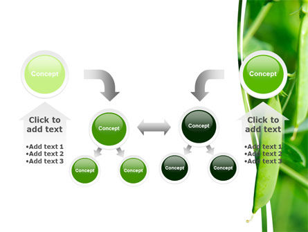 Pea Pods PowerPoint Template Slide 19
