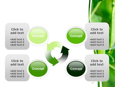 Pea Pods PowerPoint Template Slide 9