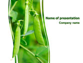 Agriculture: Pea Pods PowerPoint Template #07180