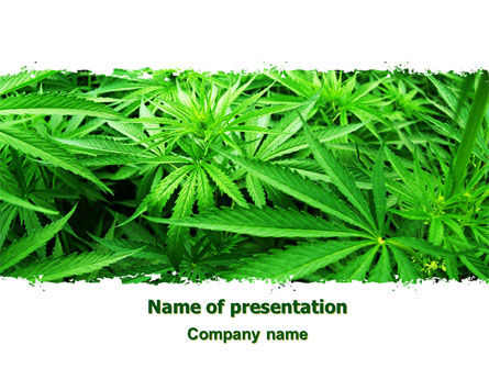 Legal: Cannabis PowerPoint Template #07243