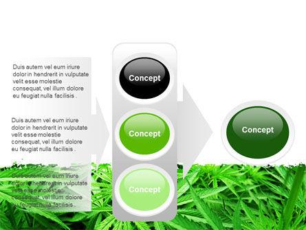 Cannabis PowerPoint Template Slide 11