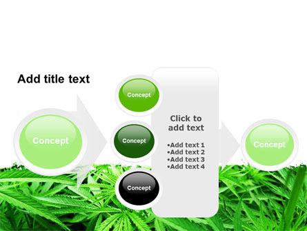 Cannabis PowerPoint Template Slide 17