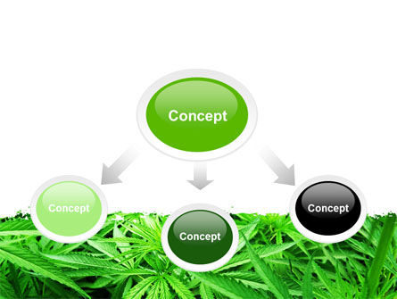 Cannabis PowerPoint Template, Slide 4, 07243, Legal — PoweredTemplate.com