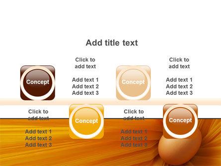 Egg PowerPoint Template Slide 18