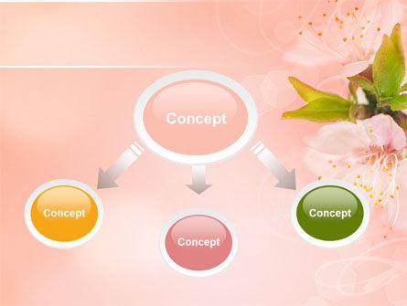 Peach Colored PowerPoint Template, Slide 4, 07380, Nature & Environment — PoweredTemplate.com