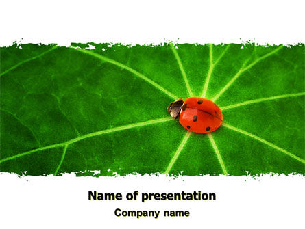 Bug on Leaf PowerPoint Template, 07430, Nature & Environment — PoweredTemplate.com