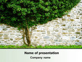 Nature & Environment: Tree On The Wall PowerPoint Template #07468