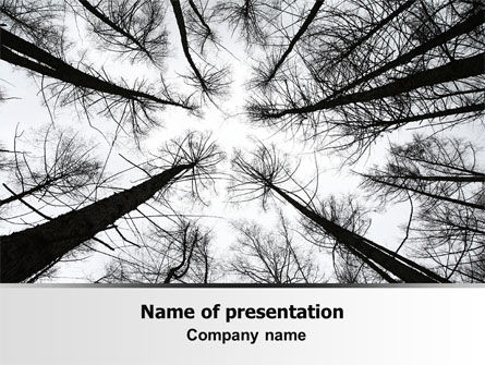 Nature & Environment: Winter Trees PowerPoint Template #07514