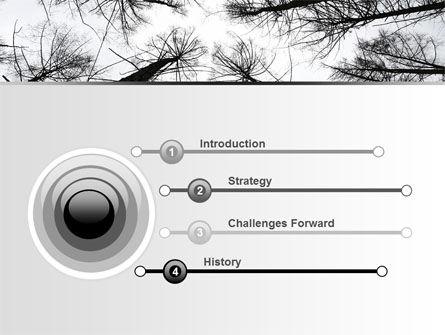 Winter Trees PowerPoint Template, Slide 3, 07514, Nature & Environment — PoweredTemplate.com