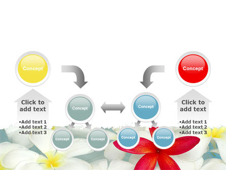 Spring Flowers PowerPoint Template Slide 19