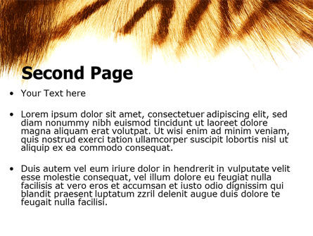 Tiger Skin PowerPoint Template, Slide 2, 07552, Animals and Pets — PoweredTemplate.com