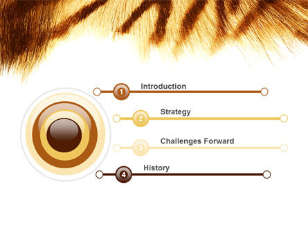 Tiger Skin PowerPoint Template, Slide 3, 07552, Animals and Pets — PoweredTemplate.com