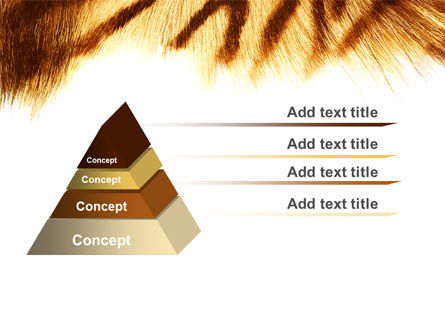 Tiger Skin PowerPoint Template, Slide 4, 07552, Animals and Pets — PoweredTemplate.com