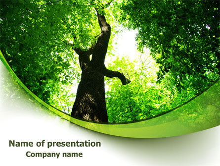 High Tree PowerPoint Template, 07704, Nature & Environment — PoweredTemplate.com