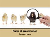 Consulting: Modelo do PowerPoint - segregar #07707