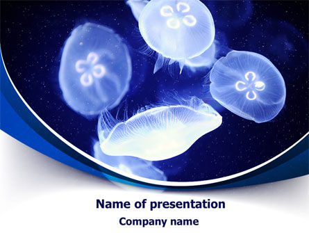 Jellyfish PowerPoint Template, 07720, Nature & Environment — PoweredTemplate.com