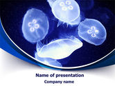 Nature & Environment: Jellyfish PowerPoint Template #07720
