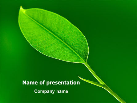 Nature & Environment: New Green Leaf PowerPoint Template #07736