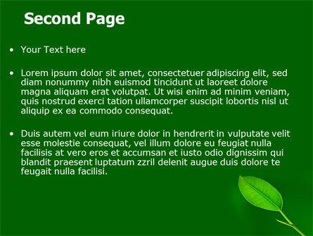 New Green Leaf PowerPoint Template, Slide 2, 07736, Nature & Environment — PoweredTemplate.com