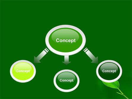 New Green Leaf PowerPoint Template, Slide 4, 07736, Nature & Environment — PoweredTemplate.com