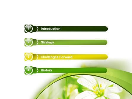 Spring Bloom PowerPoint Template, Slide 3, 07764, Nature & Environment — PoweredTemplate.com