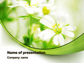 Nature & Environment: Spring Bloom PowerPoint Template #07764