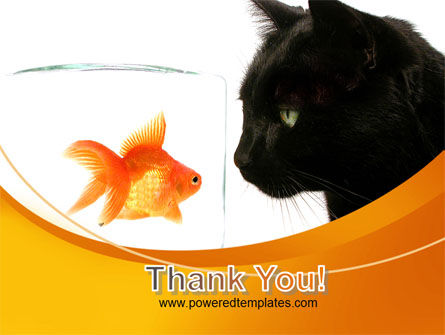 Fish and Cat PowerPoint Template Slide 20