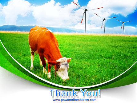 Grazing Cow PowerPoint Template Slide 20
