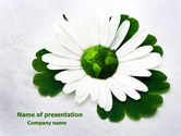 Nature & Environment: World Daisy PowerPoint Template #07859