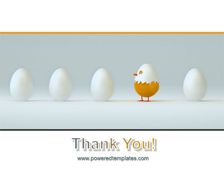 Hatched Chicken PowerPoint Template Slide 20