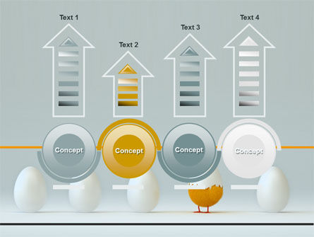 Hatched Chicken PowerPoint Template Slide 7