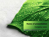 Nature & Environment: Wet Leaf PowerPoint Template #07892