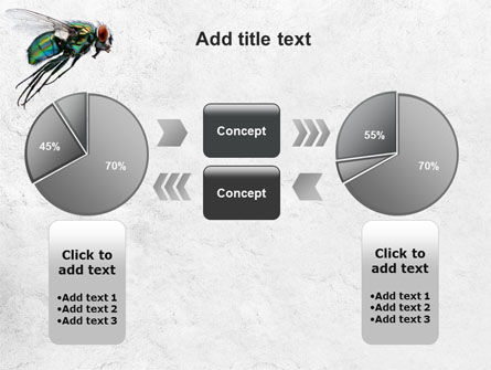 Fly PowerPoint Template Slide 11