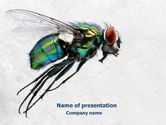 Fly PowerPoint Template#1